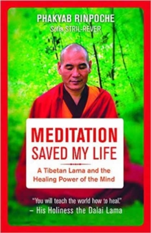 Meditation Saved My Life : A Tibetan Lama and the Healing Power of the Mind, Paperback / softback Book