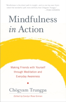 Mindfulness In Action, Paperback Book
