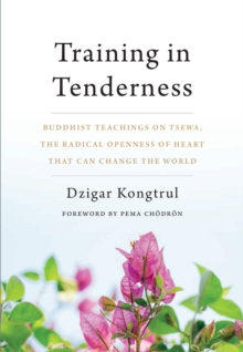 Training In Tenderness : Buddhist Teachings on Tsewa, the Radical Openness of Heart That Can Change theWorld, Paperback Book