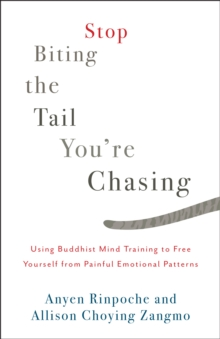 Stop Biting the Tail You're Chasing : Using Buddhist Mind Training to Free Yourself from Painful Emotional Patterns, Paperback / softback Book
