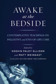 Awake at the Bedside : Contemplative Palliative and End of Life Care, Paperback Book