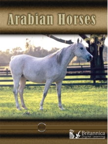 Arabian Horses, PDF eBook