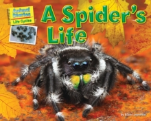 A Spider's Life, PDF eBook