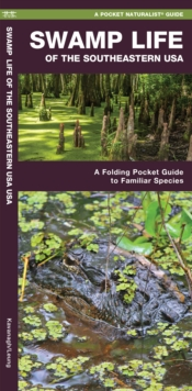 Swamp Life of the Southeastern USA : A Folding Pocket Guide to Familiar Species, Paperback / softback Book