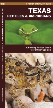 Texas Reptiles & Amphibians : A Folding Pocket Guide to Familiar Species, Paperback / softback Book