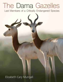 The Dama Gazelles : Last Members of a Critically Endangered Species, Hardback Book