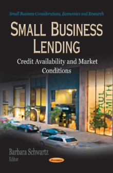 Small Business Lending : Credit Availability & Market Conditions, Paperback Book