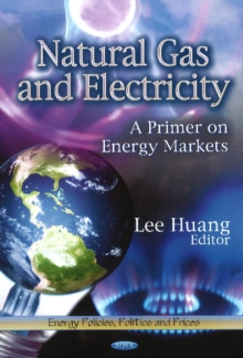 Natural Gas & Electricity : A Primer on Energy Markets, Hardback Book