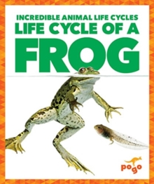 Life Cycle of a Frog, Hardback Book