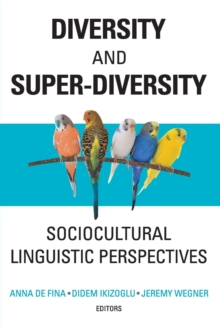 Diversity and Super-Diversity : Sociocultural Linguistic Perspectives, Paperback Book