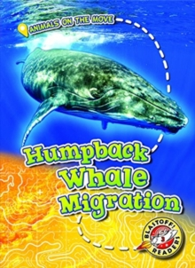Humpback Whale Migration, Hardback Book