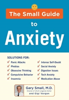 DR SMALL'S GUIDE TO ANXIETY, Paperback Book