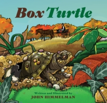 Box Turtle, Hardback Book