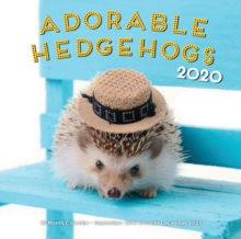 Adorable Hedgehogs 2020 : 16-Month Calendar - September 2019 through December 2020, Calendar Book