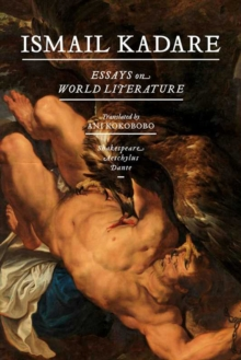 Essays On World Literature : Shakespeare, Aeschylus, Dante, Paperback Book