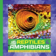 Reptiles & Amphibians : A Close-Up Photographic Look Inside Your World, Hardback Book