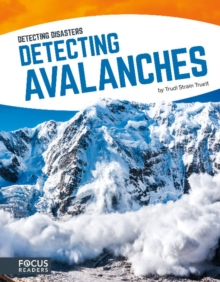 Detecting Avalanches, Paperback Book