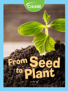 From Seed to Plant, PDF eBook