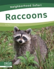 Neighborhood Safari: Raccoons, Hardback Book