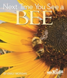 Next Time You See a Bee, Paperback / softback Book