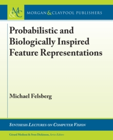 Probabilistic and Biologically Inspired Feature Representations, PDF eBook