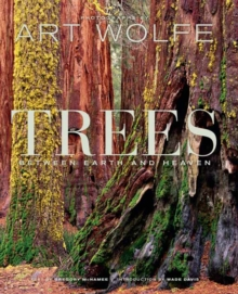 Trees : Between Heaven and Earth, Hardback Book