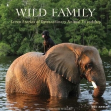 Wild Family : Seven Stories of Extraordinary Animal Friendship, Hardback Book