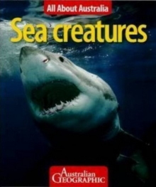 All About Australia: Sea Creatures, Paperback Book