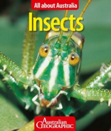 All About Australia: Insects, Paperback Book