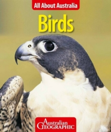 All About Australia: Birds, Paperback Book