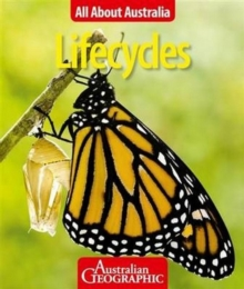 All About Australia: Lifecycles, Paperback Book