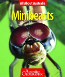 All About Australia: Minibeasts, Paperback Book