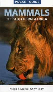 Pocket Guide Mammals of Southern Africa, Paperback Book