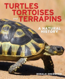 Turtles, Tortoises and Terrapins : A Natural History, Hardback Book