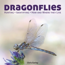 Dragonflies : Hunting - Identifying - How and Where They Live, Paperback Book
