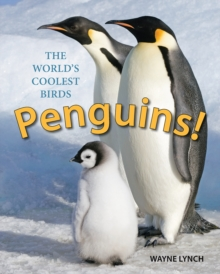 Penguins! : The World's Coolest Birds, Paperback Book