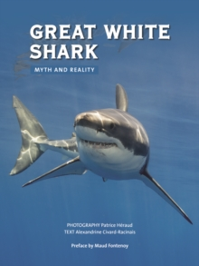 Great White Shark : Myth and Reality, Paperback / softback Book
