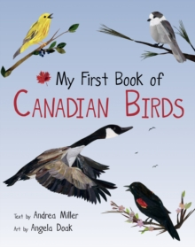 My First Book of Canadian Birds, PDF eBook