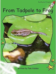 Red Rocket Readers : Early Level 4 Non-Fiction Set C: From Tadpole to Frog Big Book Edition, Big book Book