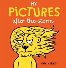 My Pictures After the Storm, Hardback Book