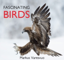 Fascinating Birds, Hardback Book