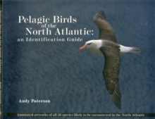 Pelagic Birds Of The North Atlantic : An Identification Guide, Paperback / softback Book