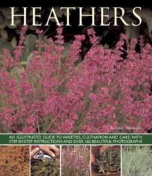 Heathers : An Illustrated Guide to Varities, Cultivation and Care, with Step-by-step Instructions and Over 160 Beautiful Photographs, Paperback / softback Book
