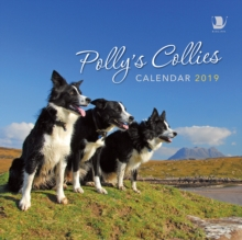 Polly's Collies Calendar 2019, Calendar Book