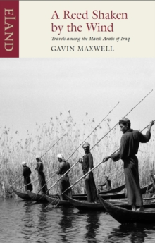 A Reed Shaken by the Wind : Travels among the Marsh Arabs of Iraq, EPUB eBook
