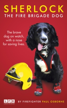Sherlock: The Fire Brigade Dog, Hardback Book