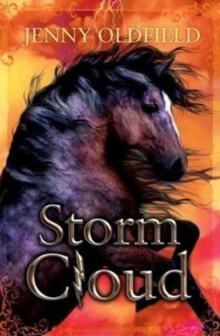 Storm Cloud, Paperback Book
