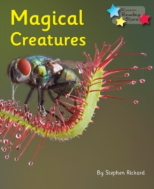 Magical Creatures, Paperback Book