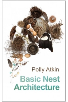 Basic Nest Architecture, Paperback Book