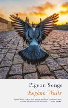 Pigeon Songs, Paperback / softback Book